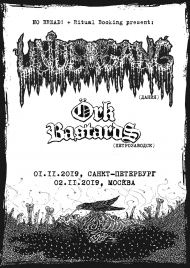 2 ноября 2019, UNDERGANG / ORK BASTARDS (Rock House)